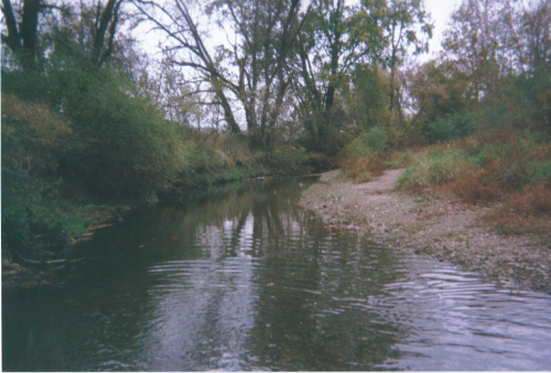 Apple creek fishing report near wooster ohio for Trout fishing in ohio
