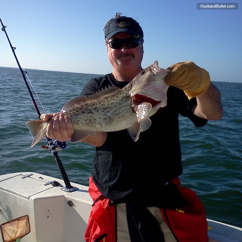 Aaa vortex charters of tampa bay fishing guide for Fishing treasure island florida