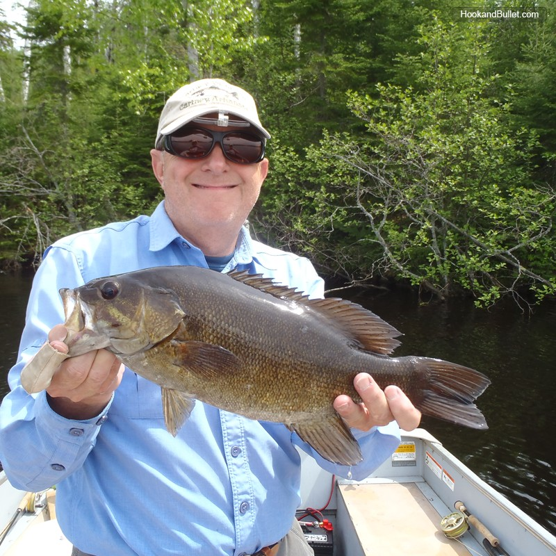 Moose track adventures lodge outfitter and guide service for Ely minnesota fishing