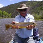 Cheyenne wy fishing reports fishing times licenses for Fishing license wyoming