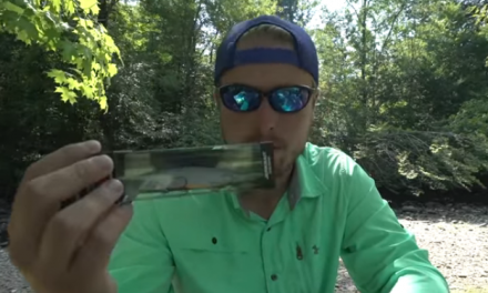 Best Bass Lures for Fall Fishing