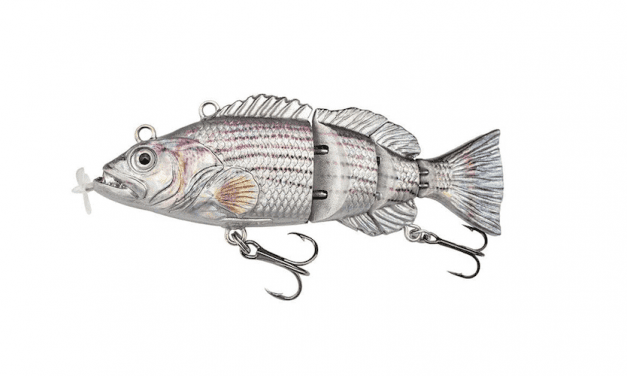 The Best Robotic Fishing Lure in 2021