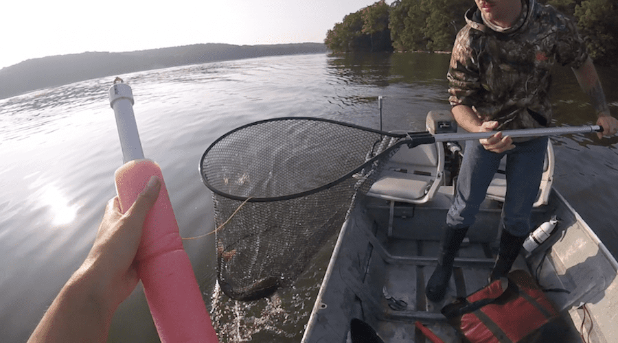 Someone holding a catfish jug with another angler on the boat netting the catfish.