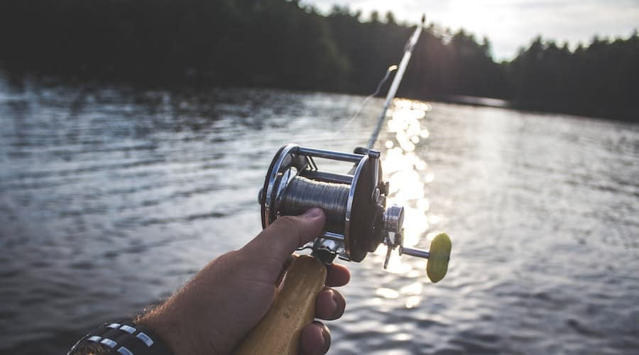A person holding a fishing rod with lake and woods in the background.