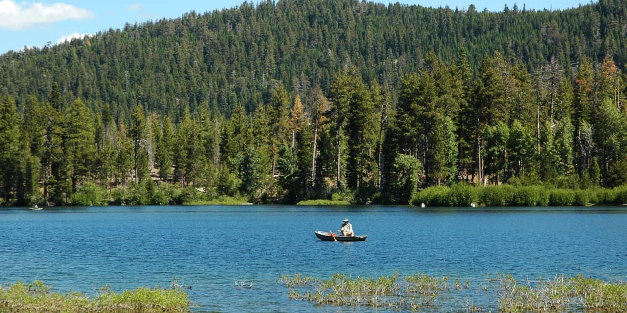 Best Fishing in California