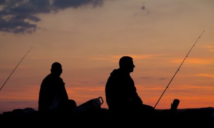 How to Set Up a Fishing Pole for Beginners