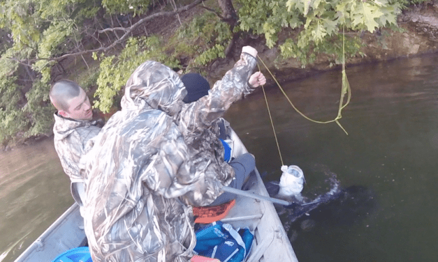 How to Catch Catfish in Lakes: A Beginner's Guide