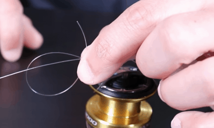 How to Tie an Arbor Knot