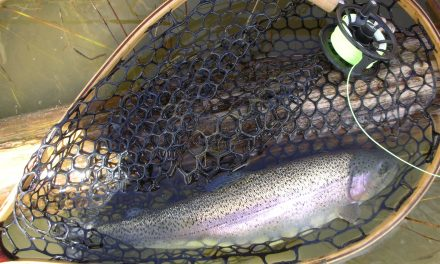 10 Tandem Rigs for Trout