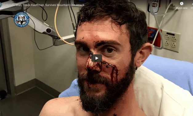 Man Who Survived Mountain Lion Attack Shares His Story
