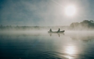 The Best Times to Fish for Bass and Trout All Year Long