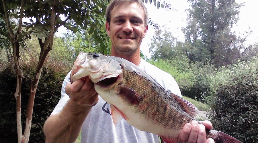 A man holding a shoal bass with trees in the background.
