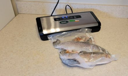 How to Store Freshly Harvested Fish