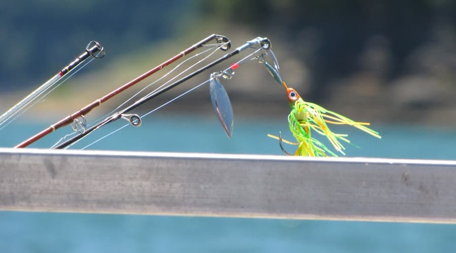 What Color Lure To Use for Deep Water Fishing?