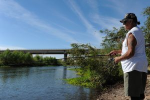 Maricopa County (AZ) Fishing Reports, Times, Licenses, and Shops