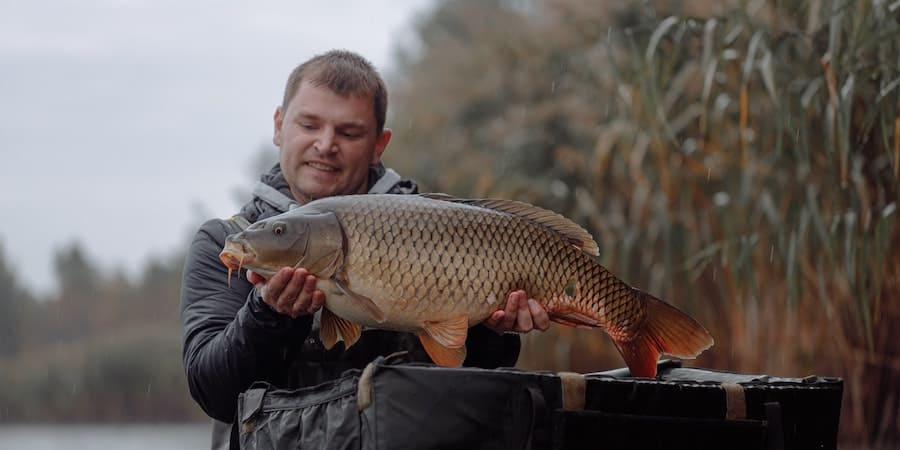 A man holding a carp with tall grass in the background