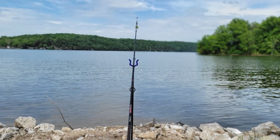 A catfish rod with a catfish rig casted out into the water with a lake in the background