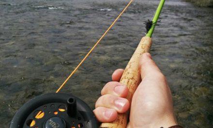 Idaho Fishing Licenses