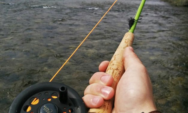 Idaho Fishing Licenses