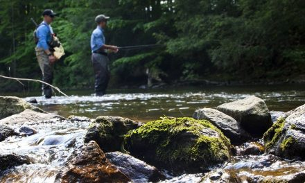 New Jersey Fishing Licenses