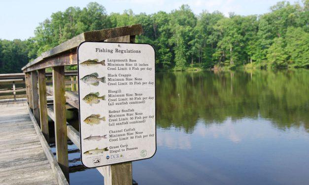 Virginia Fishing Licenses